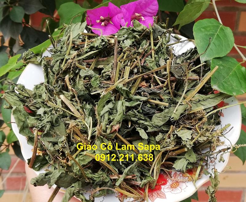 Trà Giảo Cổ Lam